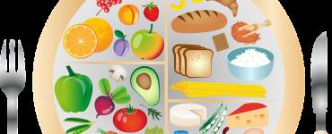My Plate Nutrition Nutrients  - dandelion_tea / Pixabay